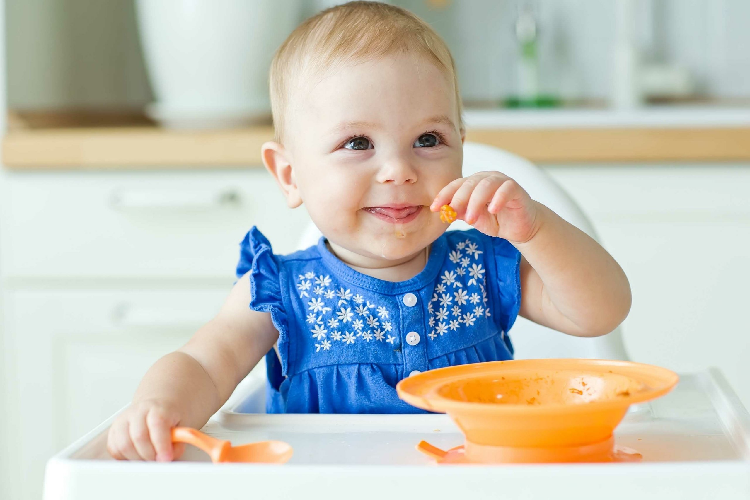 The Complete Guide to Baby Led Weaning
